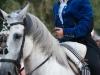 caballo (10)