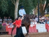 caballo (14)