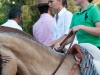 caballo (9)