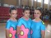 trios 011