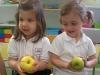fruits18