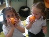 fruits21