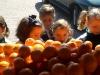 fruits6