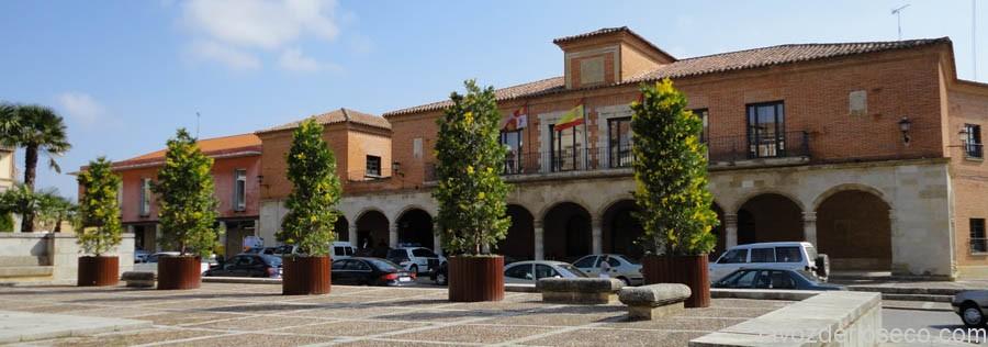 DSC00034.Plz_.Mayor_.Ayuntamiento.Medina-de-Rioseco