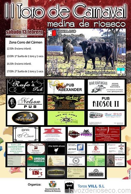 cartel toros carnaval